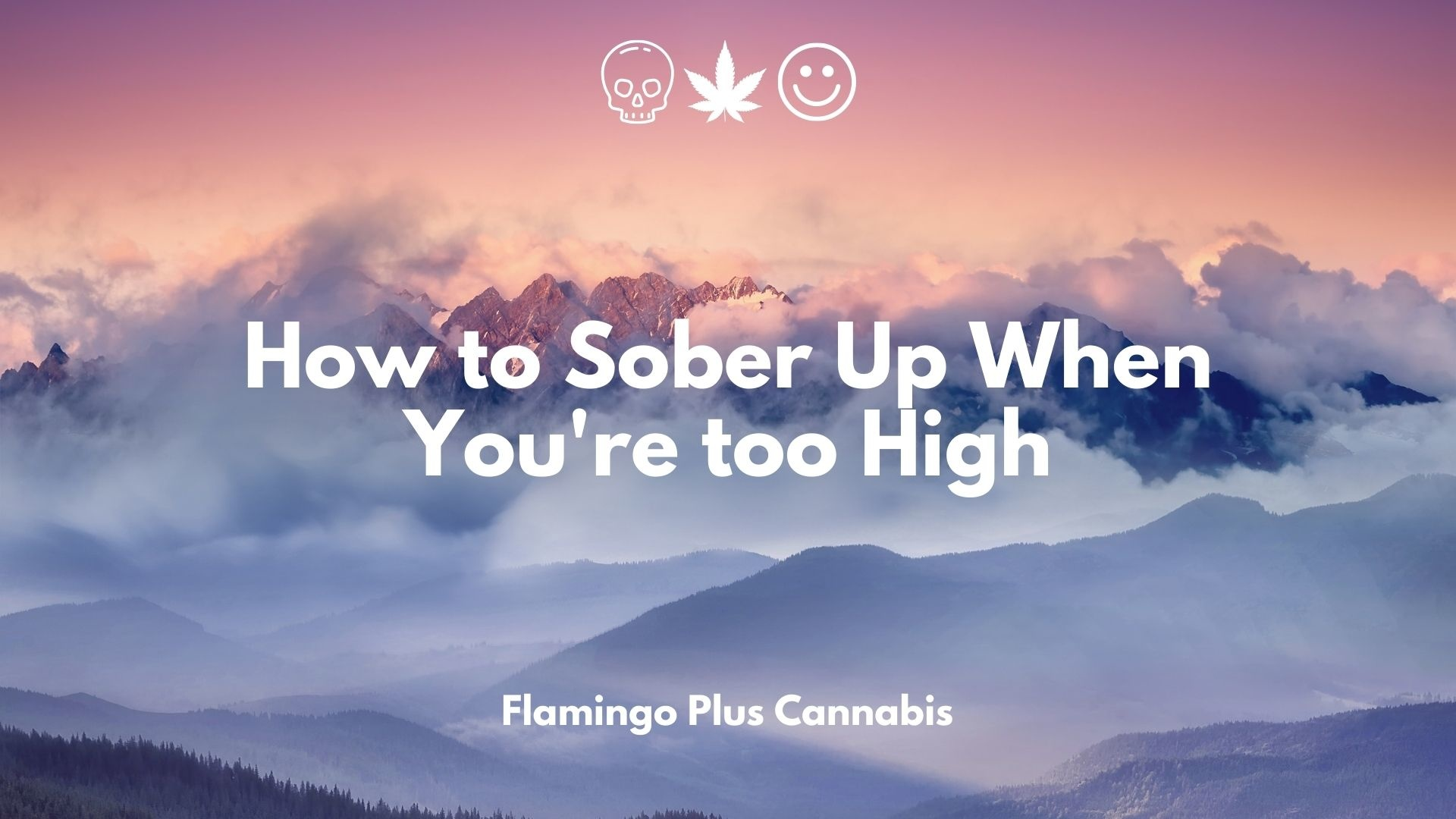 How to Sober Up When You're too High.