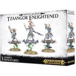 Games Workshop Warhammer  Age of Sigmar: Tzeentch Arcanites Tzaangor Enlightened/Skyfires