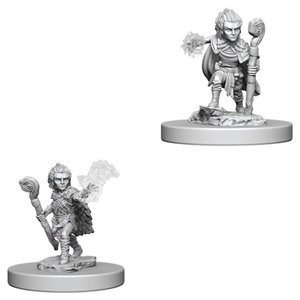 WizKids Pathfinder Battles Deep Cuts Unpainted Miniatures: Gnome Male Druid (W5)