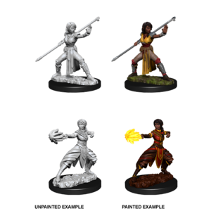 WizKids D&D Nolzur's Marvelous Miniatures: Female Half-elf Monk (W10)