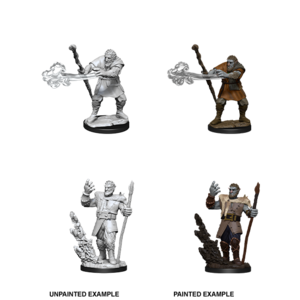 WizKids D&D Nolzur's Marvelous Miniatures: Male Firbolg Druid (W11)