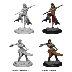 WizKids D&D Nolzur's Marvelous Miniatures: Human Female Monk (W1)