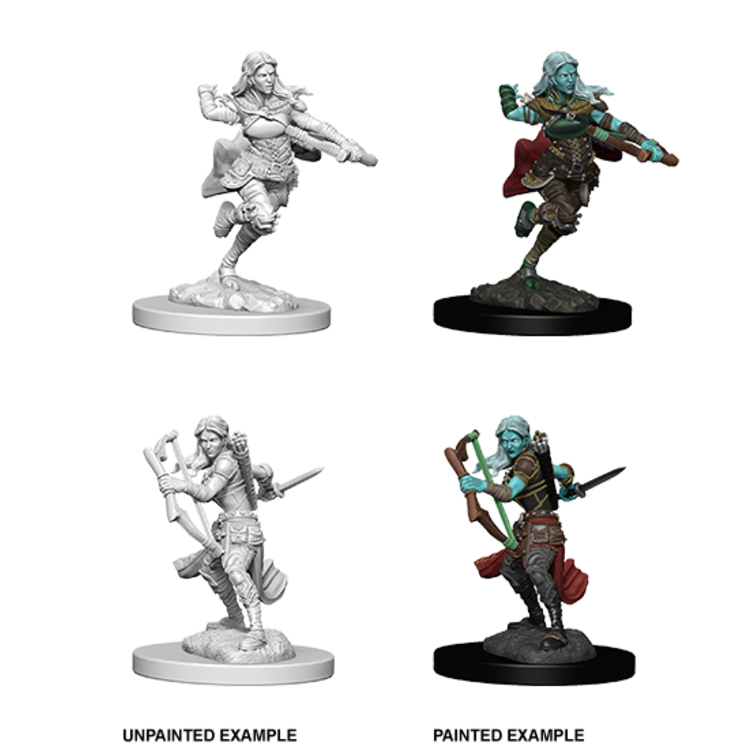 WizKids D&D Nolzur's Marvelous Miniatures: Air Genasi Female Rogue (W4)
