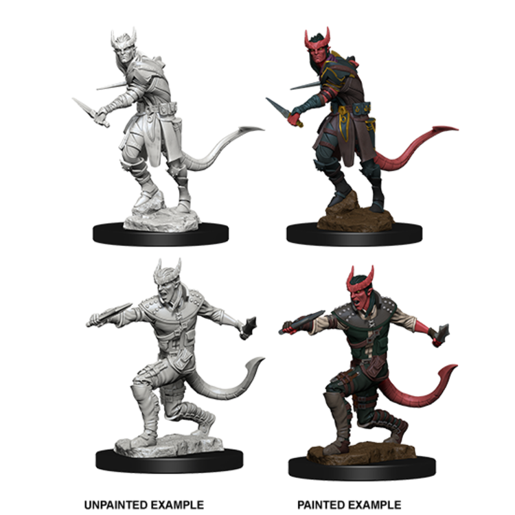 WizKids D&D Nolzur's Marvelous Miniatures: Tiefling Male Rogue (W5)