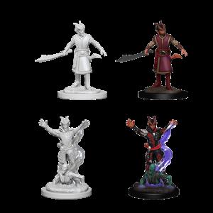 WizKids D&D Nolzur's Marvelous Miniatures: Tiefling Male Warlock (W6)