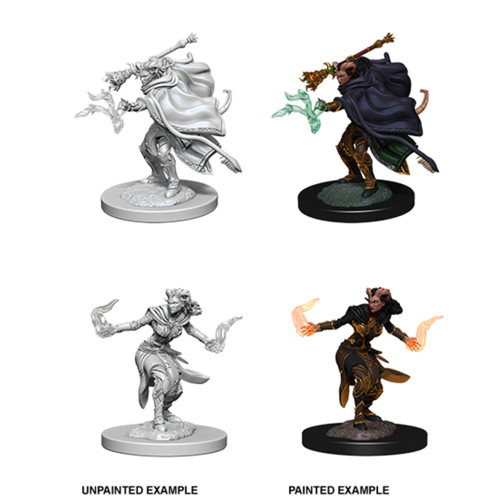 WizKids D&D Nolzur's Marvelous Miniatures: Tiefling Female Warlock (W6)
