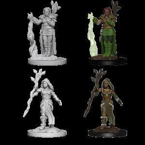 WizKids Dungeons & Dragons Nolzur's Marvelous Unpainted Miniatures: W2 Human Female Druid