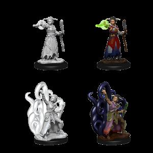 WizKids D&D Nolzur's Marvelous Miniatures: Female Human Warlock  (W10)