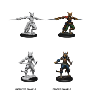 WizKids D&D Nolzur's Marvelous Miniatures: Tabaxi Female Rogue (W9)