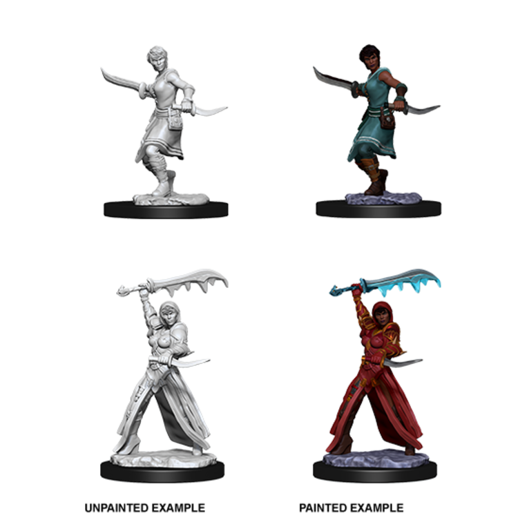 WizKids D&D Nolzur's Marvelous Miniatures: Female Human Rogue  (W10)