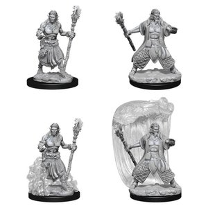 WizKids D&D Nolzur's Marvelous Miniatures: Water Genasi Male Druid (W5)