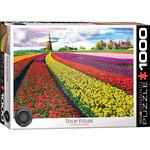 Eurographics Eurographics Puzzle: Tulip Field- Netherlands - 1000pc