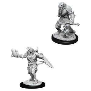 WizKids D&D Nolzur's Marvelous Miniatures: Dragonborn Paladin Male (W11)
