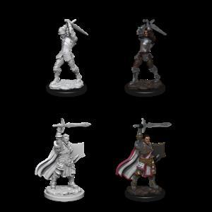 WizKids D&D Nolzur's Marvelous Miniatures: Male Human Paladin (W12)