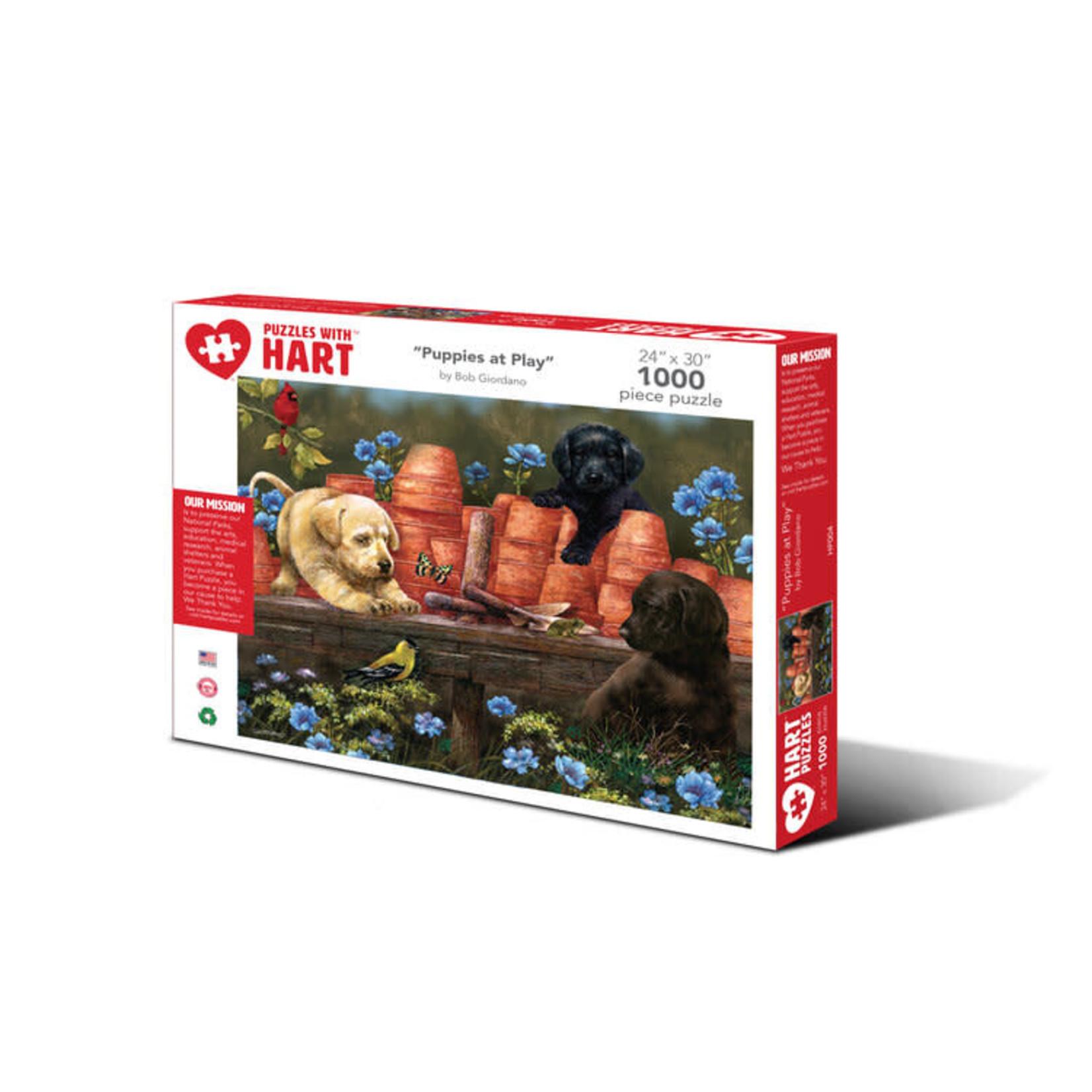 Hart Puzzles Hart Puzzles: Puppies at Play 1000pc