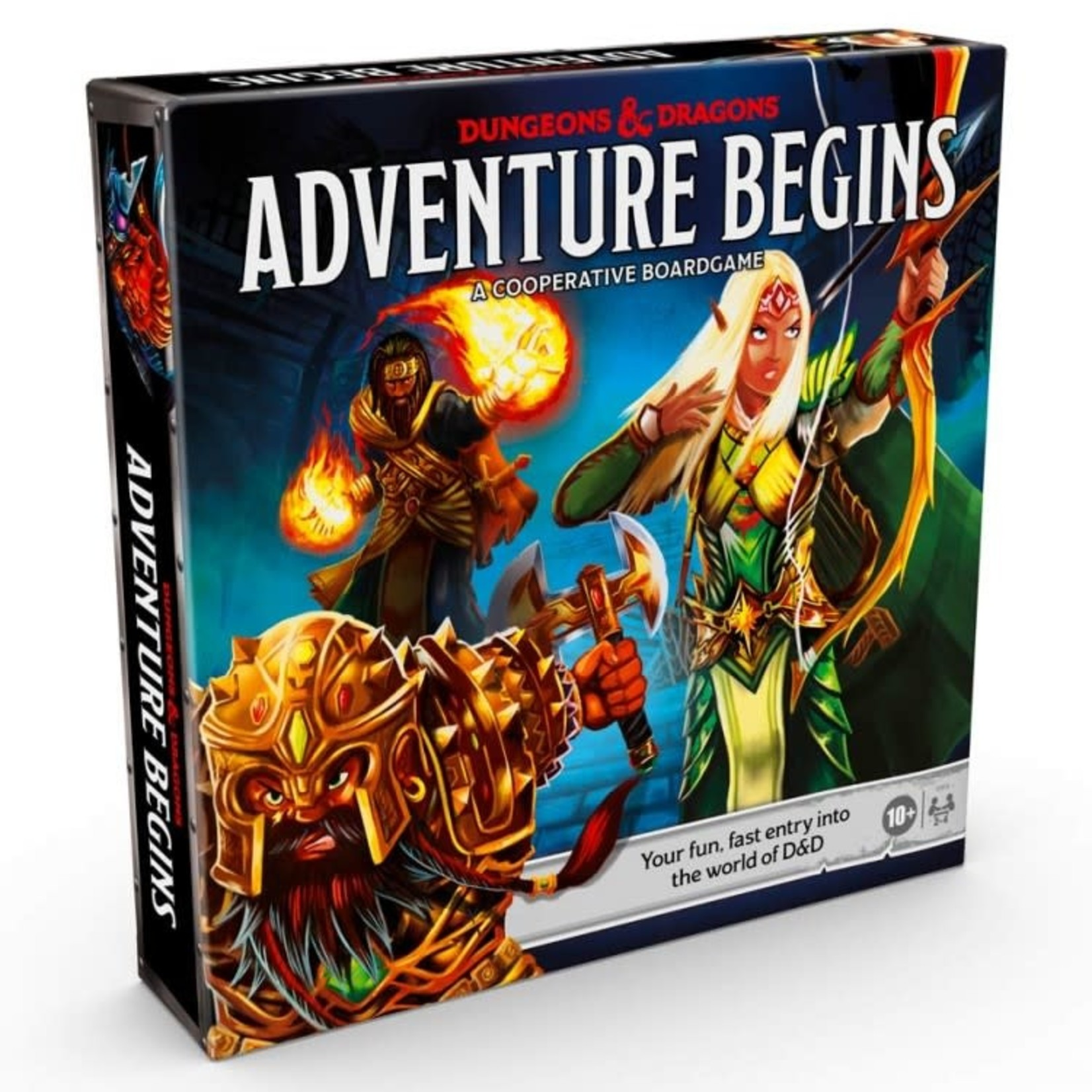 Hasbro Dungeons and Dragons: Adventure Begins