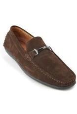Montique Montique Casual Shoe - S241 Brown