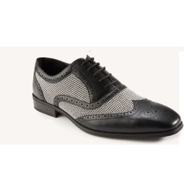 Montique Montique Causal Shoe - S1955 Black