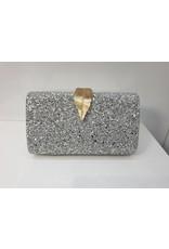 40241414 - Silver Clutch Bag