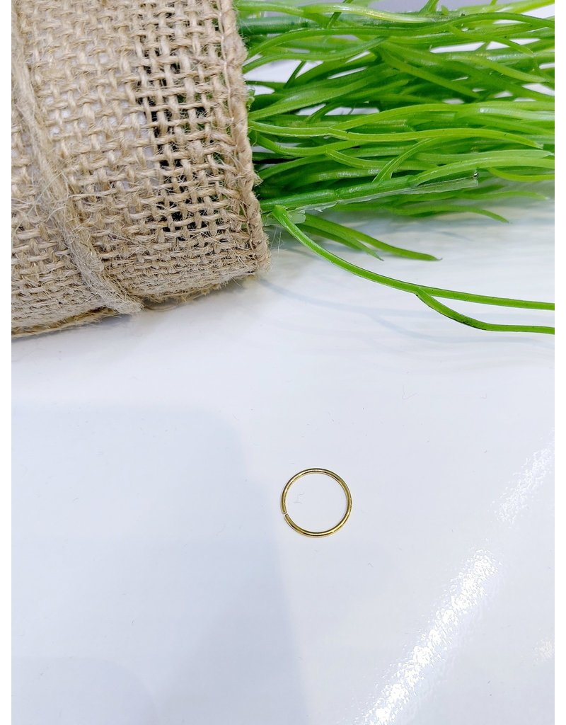 NRB0021 - Gold Hoop Nose Ring