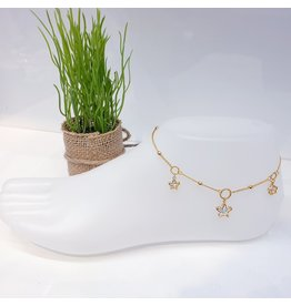 ANF0001 - Gold Anklet