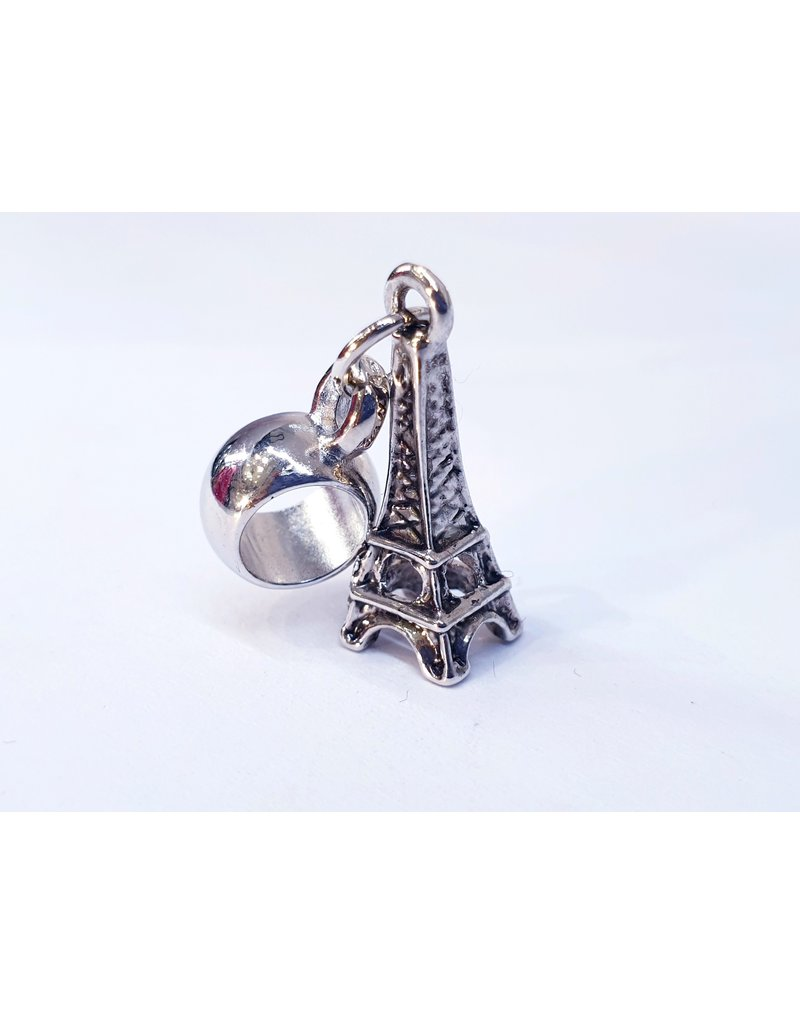 50311804 - Eiffel Tower Charm