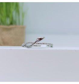 RGB170036 - Silver Ring