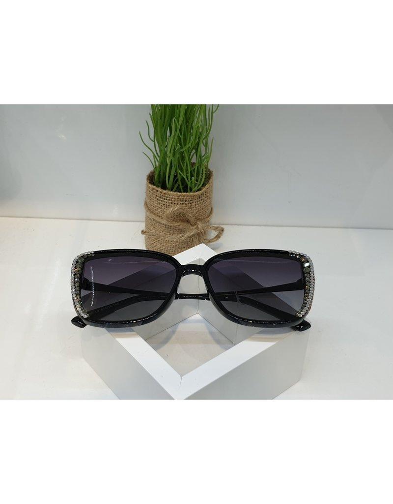 SNA0075- Silver Sunglasses