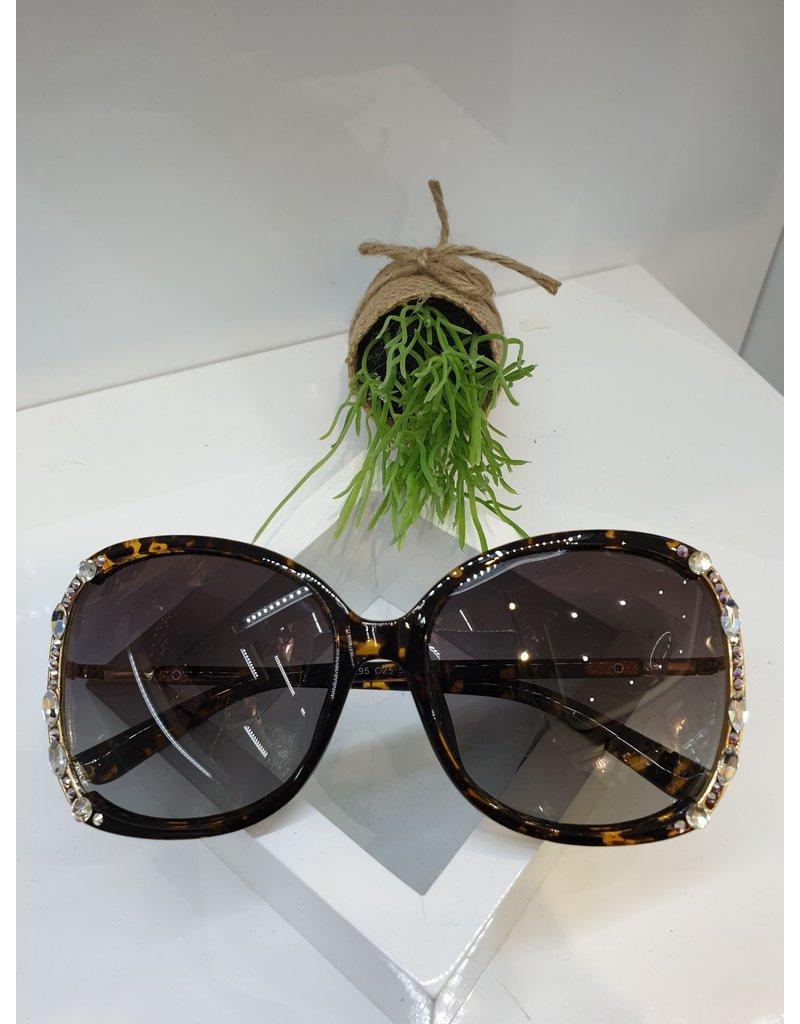 SNA0139- Silver Sunglasses