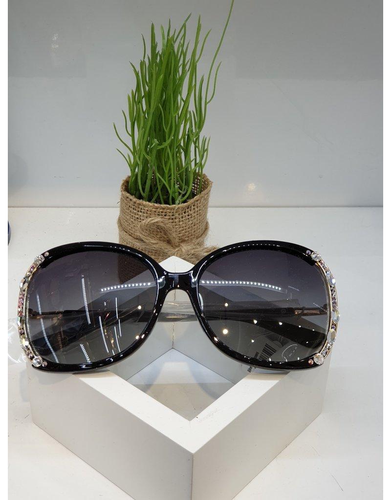 SNA0140- Silver Sunglasses