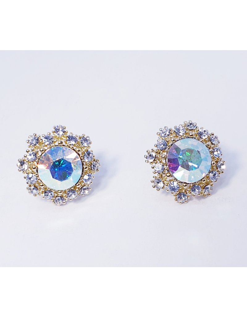ERH0244 - Mother Of Pearl  Earring