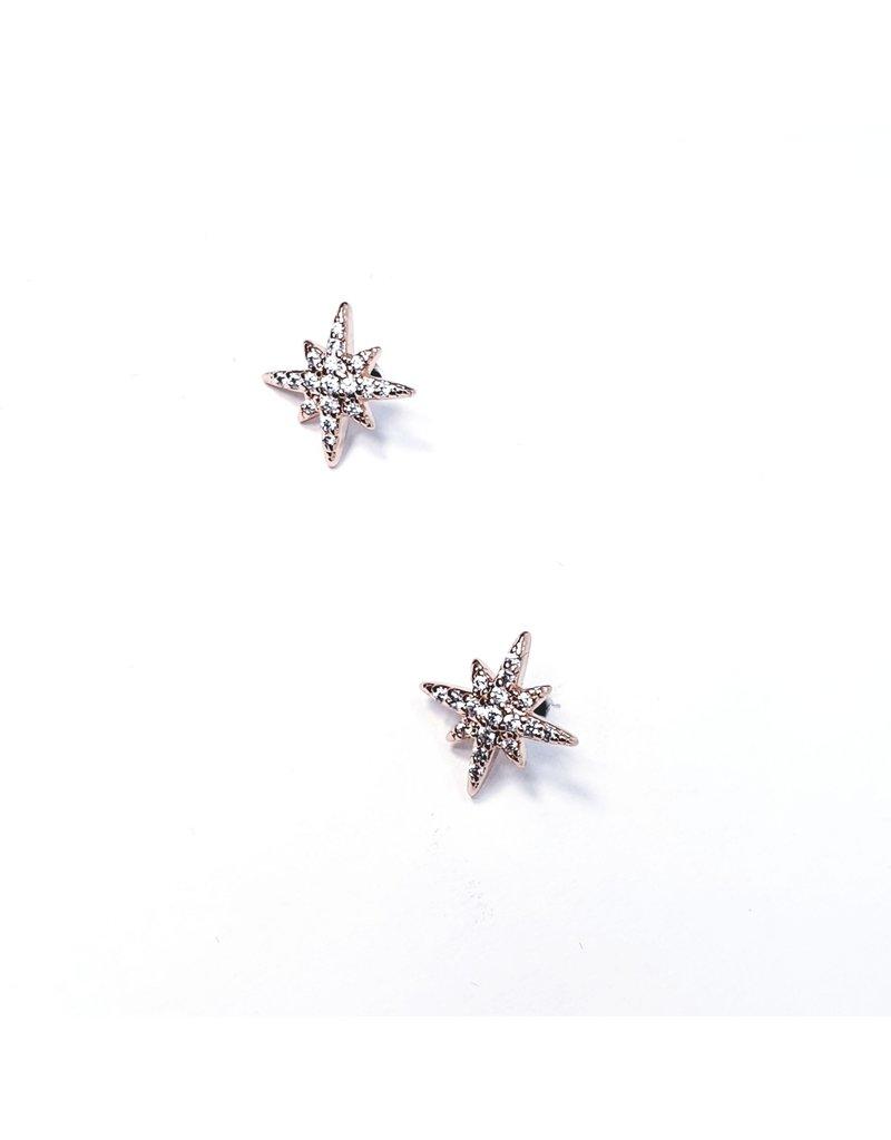 ERH0419 - Rose Gold Star  Earring