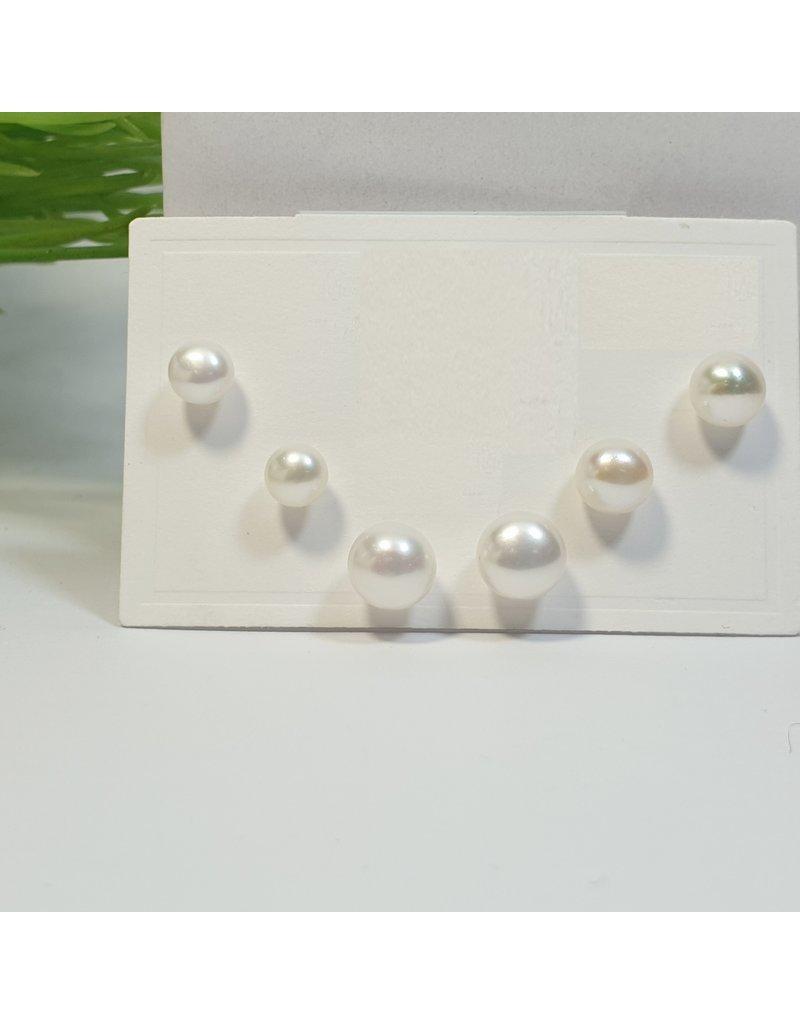 EMA0109 - Pearls  Multi-Pack Earring