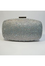 Cta0104 - Silver,  Clutch Bag