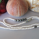 "MiNei Designs 36"" White Coral and Acai Beads with 5 Tahitian Pearls"
