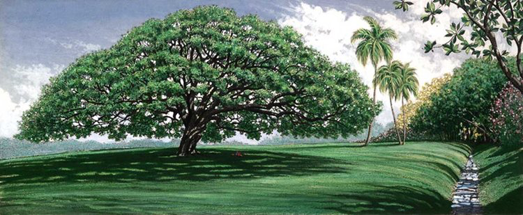 """Carol Collette MOANALUA GARDENS, Limited Edition, 7.25X18 (12""""x24"""" with matte)"""