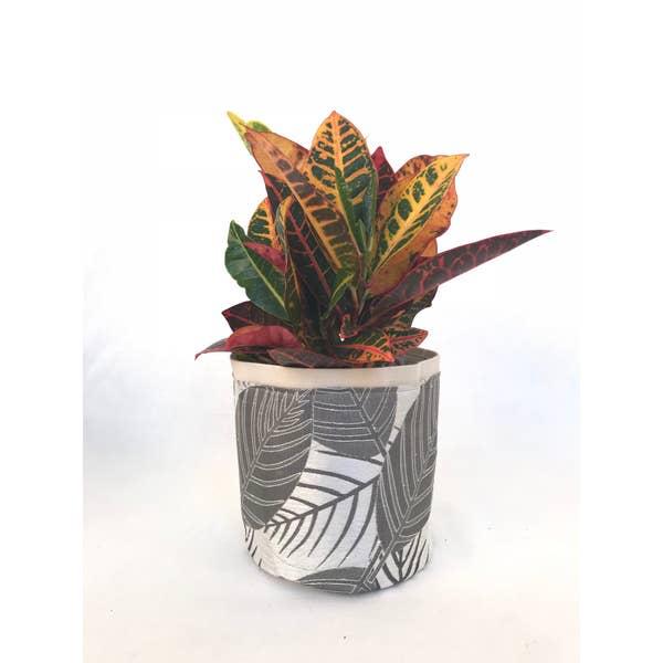 """Sax Home 4"""" SMALL FABRIC/CANVAS PLANTER - Croton Silver Plant Sax"""