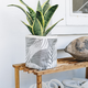 "Sax Home 6"" MED. FABRIC/CANVAS PLANTER - Croton Silver Plant Sax"