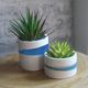 """O Yeah Gifts SMALL BLUE STRIPE RESIN PLANTER POT-APPROX 1.75"""" HEIGHT"""