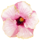 Aloha de Mele MOON CHILD, 12X12 MATTED PRINT