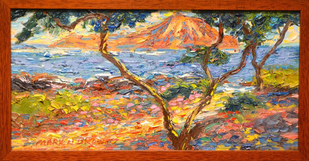 "Mark Brown ORIGINAL OIL PAINTING: 10X20 ""RABBIT ISLAND"""