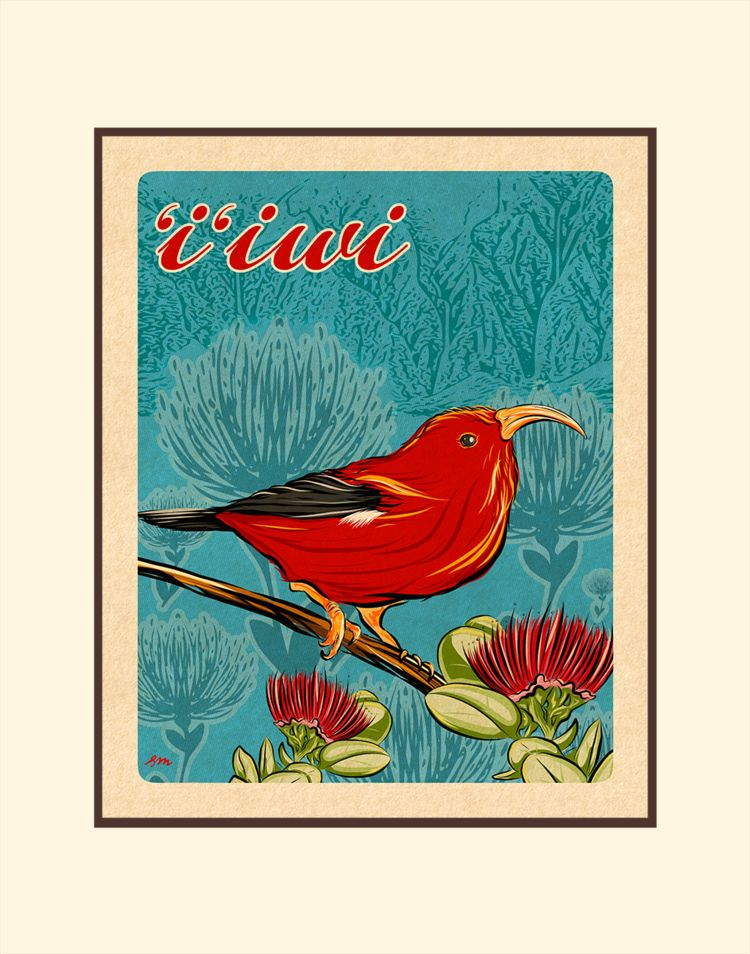 Aloha Posters I'IWI BIRD, 11X14 MATTED PRINT