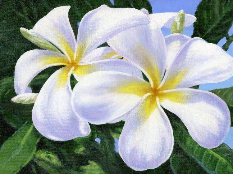 "Carol Collette Joyful Morning, 11""x14"" Gallery Wrap Giclee on Canvas"