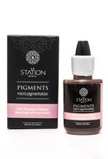 Pigment de Maquillage Permanent