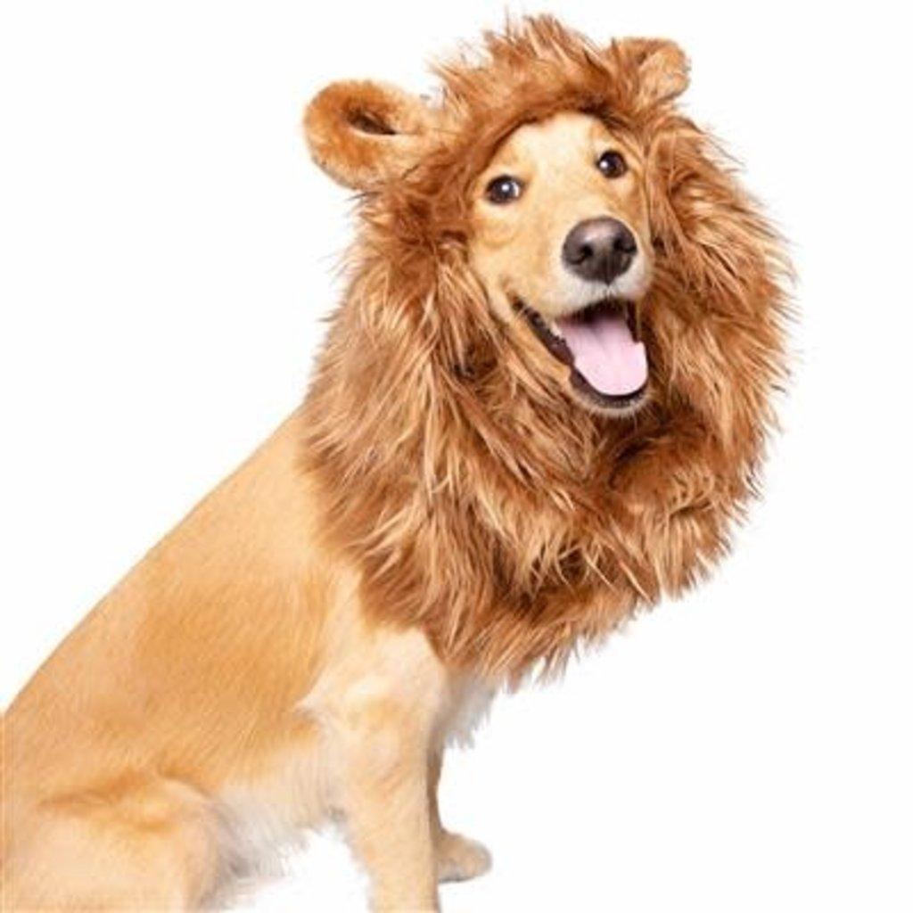 Pet Krewe Lion Mane for Med & LRG Dogs