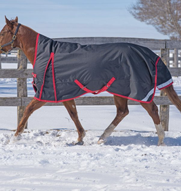 Canadian Horsewear 2020 Canadian Horsewear Xander 2100D Turnout 300gm