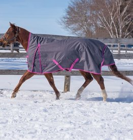 Canadian Horsewear Cobalt Turnout by Canadian Horsewear - 300 gm fill