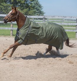 Canadian Horsewear Clover Turnout by Canadian Horsewear 1200 D with 300 gm Fill
