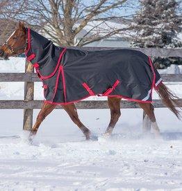 Canadian Horsewear 2020 Canadian Horsewear Diablo Reflect Bk 300gm