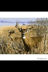 """GKS GKS Plush Deer Blanket, 60"""" x 80"""""""